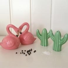 salero flamenco cactus